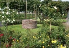 Foto's van Deco-tuinen V.o.f.