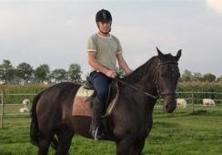 Foto's van Paardensportvereniging OBK