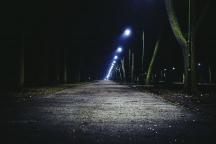 De invloed van licht op de natuur