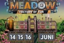 Driedaags muziekfestival Meadow (4e editie) Hapsedijk 22B